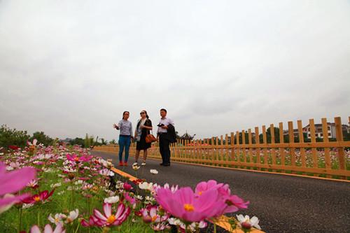賽納策劃機構策劃專家為貴州惠水縣好花紅鄉村旅游區發展把脈
